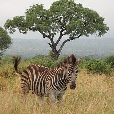 RPA – na krańcu Afryki