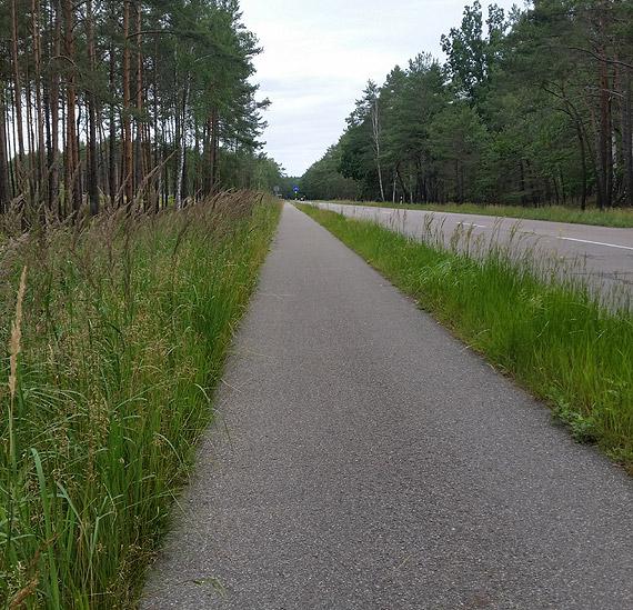 Zarośnięte pobocze ścieżki rowerowej wzdłuż ulicy Karsiborskiej