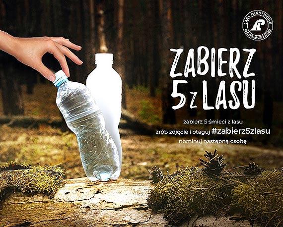 Zabierz 5 z lasu. Z roku na rok więcej śmieci w lasach