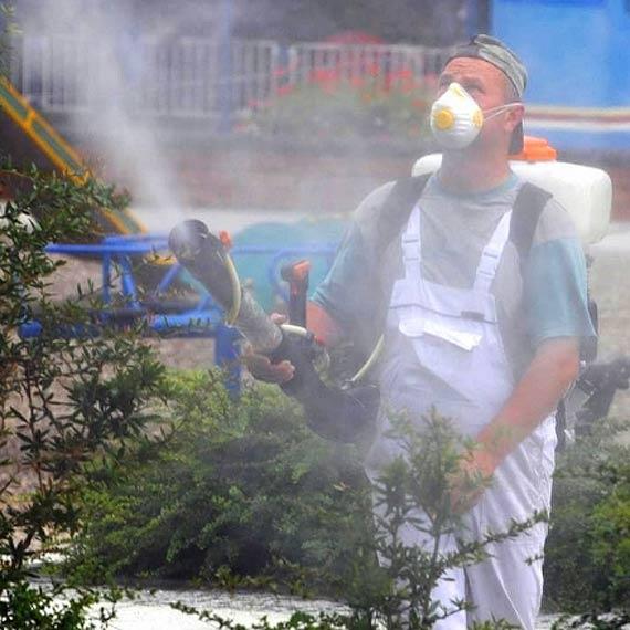 Panie prezydencie! Nie koronawirus ale komary dobijają sezon 2020!!!