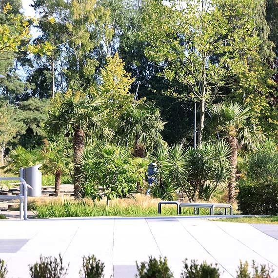 Atrakcje Ogrodu Sensorycznego i piesza wycieczka po promenadzie