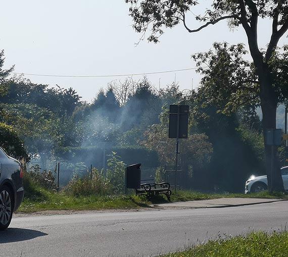 Mieszkaniec: Działkowcy witają wjeżdżających do Świnoujścia siwym dymem!
