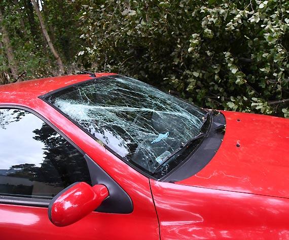 Na Rycerskiej potężne drzewo przewróciło się na 2 samochody. 1 nadaje się do kasacji