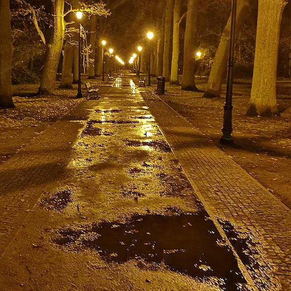 Mieszkaniec - Na spacer do Parku Zdrojowego tylko w kaloszach!