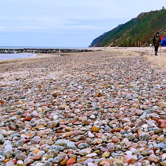 """""""Dywan z kamieni"""" na plaży w Międzyzdrojach. Niektóre mogą mieć nawet 100 milionów lat! Zobacz film!"""