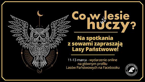 Leśnicy zapraszają na Sowią Noc