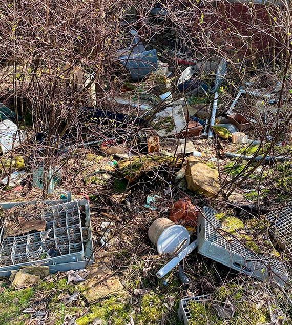Czytelnik: Kolejne śmietnisko w lesie!