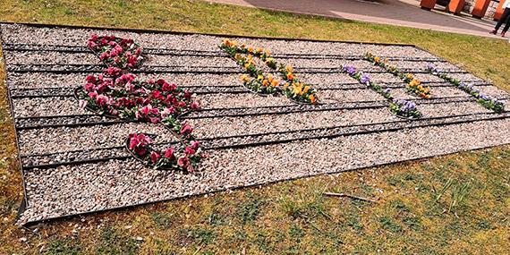 Muzyka i kwiaty w Parku Chopina