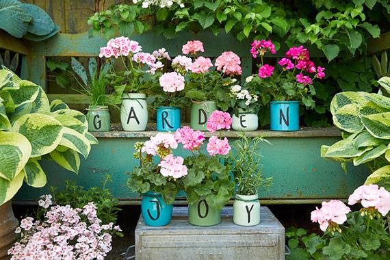 """Letnie ogrody: zrelaksuj się, twórz i  poczuj się dobrze Kreatywne pomysły """"Zrób to sam"""" z pelargoniami"""