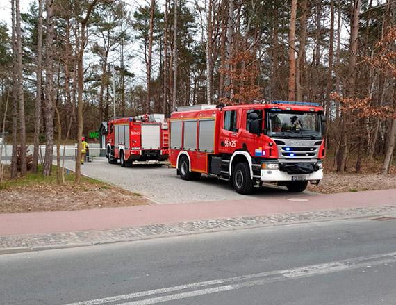 Rozpalili ognisko w lesie i sobie poszli. Na Uzdrowiskową przyjechała straż pożarna