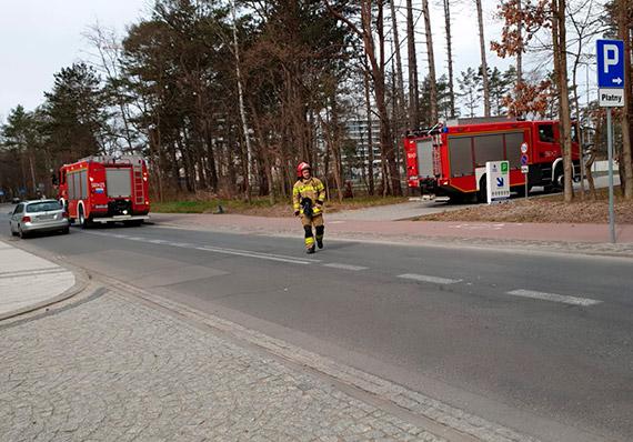 Rozpalili ognisko w lesie i sobie poszli. Na Uzdrowiskową przyjechała straż pożarna [1]