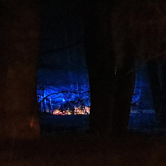Ogień w Parku Zdrojowym. Na miejsce przyjechał 1 zastęp strażaków oraz policja [1]