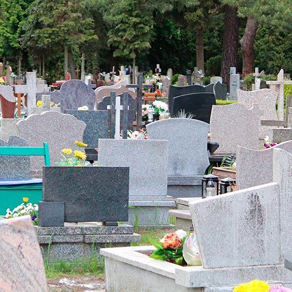 Kup pan...grób?