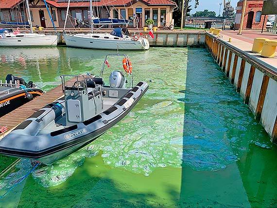 Marina pod błękitną flagą, a za burtami jachtów wciąż śmierdzi woda