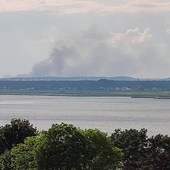 Mieszkańcy byli zaniepokojeni dużą ilością dymu: Co się tak paliło?