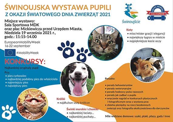 Grupa Morska zaprasza na 4. Edycję Wystawy Pupili (19.09)